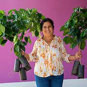 Coffee farmer Dominga Araceli Santeliz Godinez at her Santa Lucia coffee farm in Chiapas, Mexico. Photographed on May 17, 2016. (Joshua Trujillo, Starbucks)