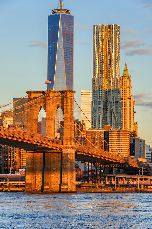 Brooklyn Bridge, designed by John Augustus Roebling, 8 Spruce Street, architect Frank Gehry, Freedon Tower, 1 WTC, the tallest skyscraper in the Western Hemisphere, designed by David Childs, The Woolworth Building designed by Cass Gilbert, Manhattan, New York City, NY