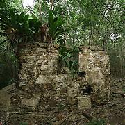 Beverhoutsberg Plantation, St. John, USVI