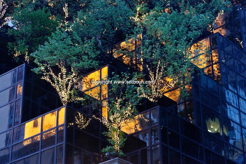 New York. mirror games and trees on Trump tower on fifth avenue. . New york - United states  Manhattan  / reflets   sur le trump tower  sur la cinquieme avenue New york - Etats unis