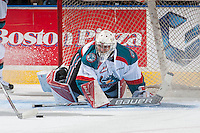 KELOWNA, CANADA - SEPTEMBER 3: Brodan Salmond #31 of Kelowna Rockets makes a save during second period on September 3, 2016 at Prospera Place in Kelowna, British Columbia, Canada.  (Photo by Marissa Baecker/Shoot the Breeze)  *** Local Caption *** Brodan Salmond;