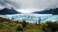 A panorama of the massive Perito Moreno Glacier in Los Glaciares National Park, Argentina.