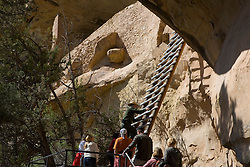 A US National Parks Ranger leads a tour group up a 36 foot ladder to the entrance of the Balcony House ruins, Mesa Verde National Park, near Cortez, Colorado.