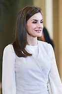 Queen Letizia of Spain attends an audience to a representation of the Foundation for Help Against Drug Addiction (FAD) and entities who are working on a mobilization campaign on 'alcohol and minors' at Zarzuela Palace on May 12, 2017 in Madrid