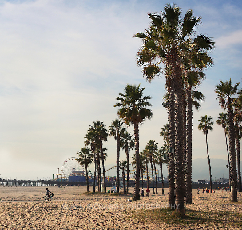 Santa Monica beach is California at its finest, with its palm trees, beach cruisers and gorgeous people.
