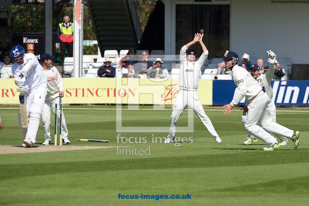 (LtoR) Alastair Cook, Ben Foakes and Captain and wicketkeeper James Foster of  Essex County Cricket Club celebrate after David Masters bowls out last man Mark Footitt of Derbyshire County Cricket Club during day 4 of the LV County Championship Div Two match at the County Ground, Chelmsford, Chelmsford<br /> Picture by Alan Stanford/Focus Images Ltd +44 7915 056117<br /> 16/04/2014