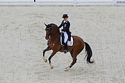 Eevamaria Porthan Broddell - Solos Lacan<br /> Alltech FEI World Equestrian Games™ 2014 - Normandy, France.<br /> © DigiShots