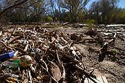 Trash, including plastics, clogs the Santa Cruz River, Tubac, Arizona, USA. The Santa Cruz River is partially fed with reclaimed water.