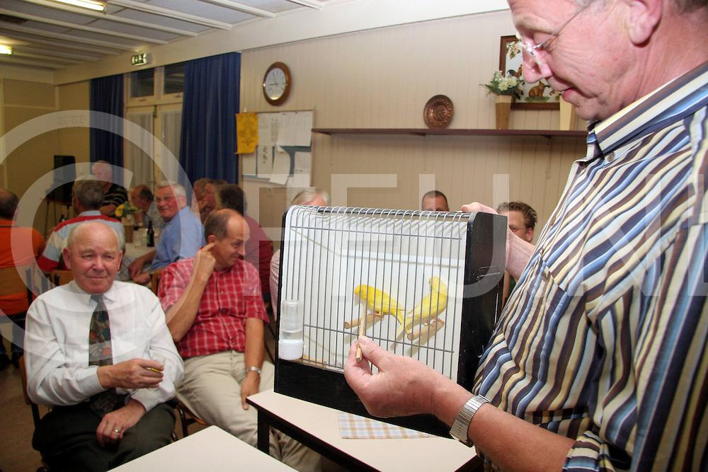 NIJVERDAL<br /> Vopgelkeuring in Nijverdal waar eigenaren uitleg kregen over hun vogels met daarbij een keuring.<br /> Foto: Keurmeester Harry ter Haar geeft uitleg<br /> Editie: NY<br /> <br /> fotografie frank uijlenbroek&copy;2006 jasper van der zwan<br /> TT2006
