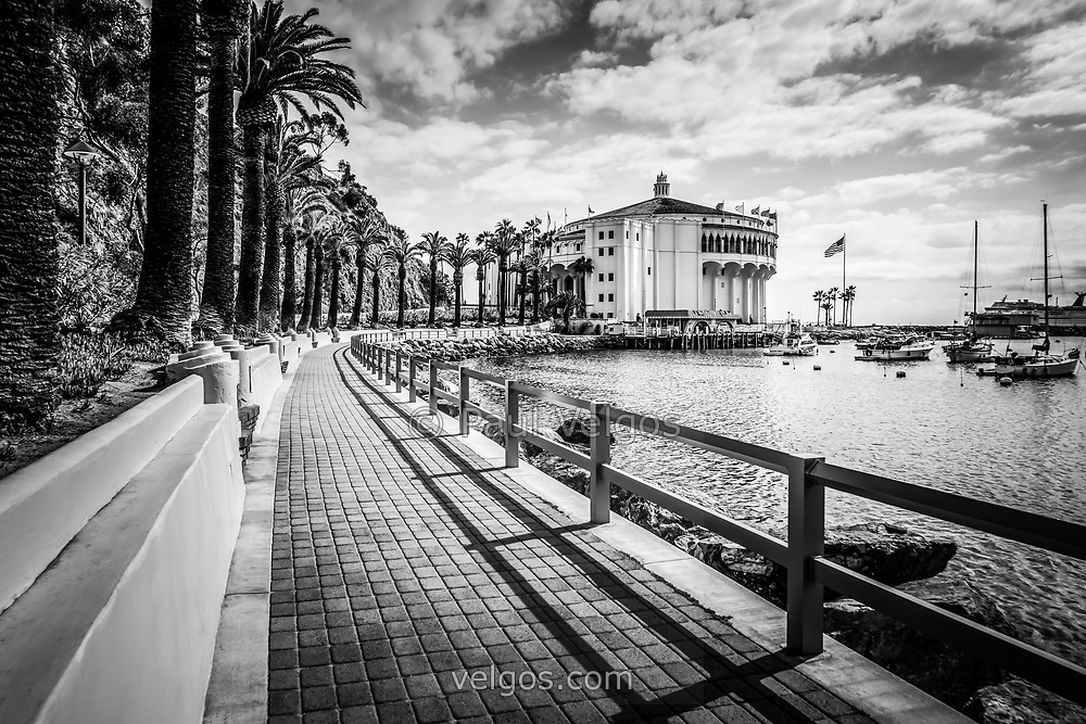 Catalina Island Avalon Casino with the Casino Way walkway black and white photo. The Avalon Casino is a historic art deco movie theatre built in 1929 by the Wrigley family. Catalina Island is a popular travel desination off the coast of Southern California in the United States.