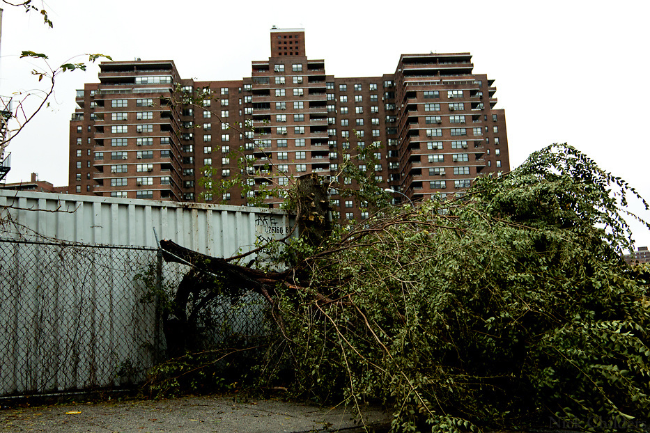 The day after Hurricane Sandy in the Lower East Side of Manhattan where residents were without power for days- New York City