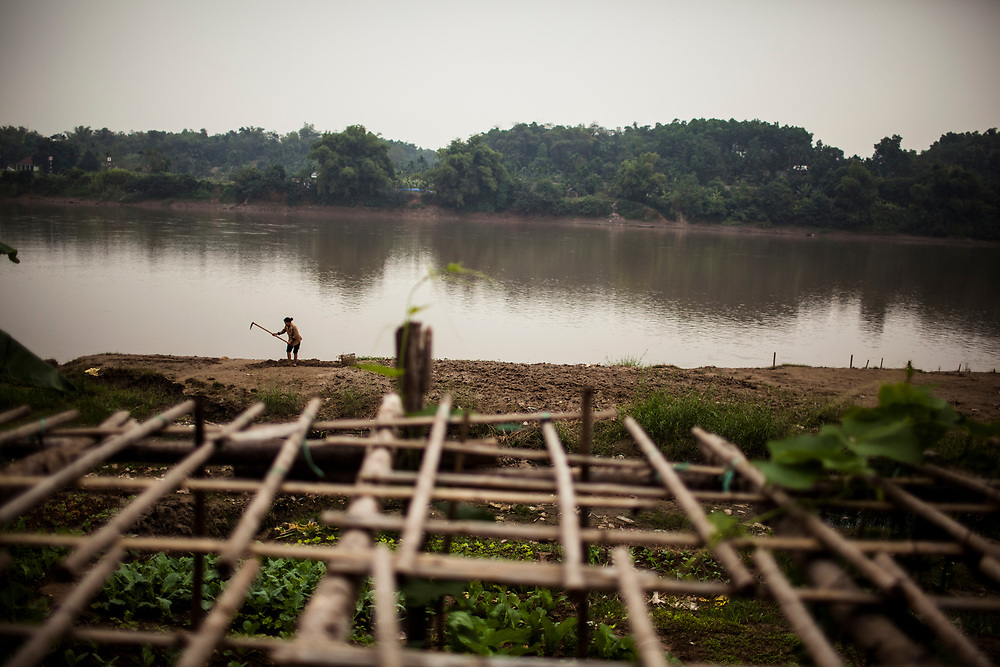 A farmer tends her fields in Yen Bai town in northern Vietnam, along the banks of the Red River.