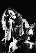 Rory Gallagher 1977