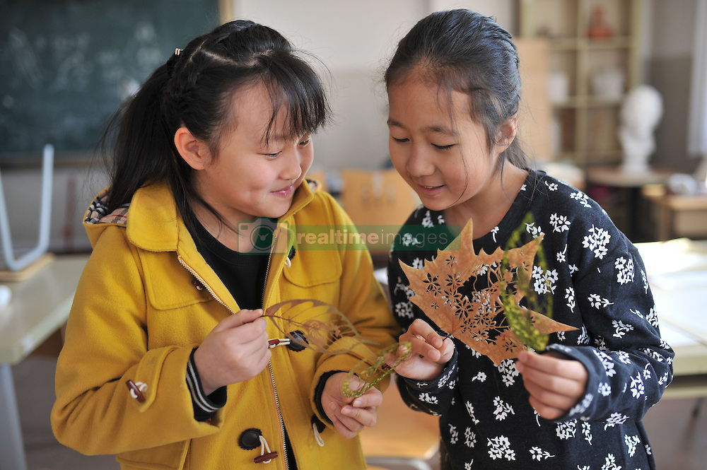 January 11, 2017 - Qingdao, Qingdao, China - Qingdao, CHINA-January 11 2017: (EDITORIAL USE ONLY. CHINA OUT) ..The rooster themed leaf carving artwork made by the primary school teacher Wang Ping in Qingdao, east China's Shandong Province, January 11th, 2017. Wang Ping collected various leaves in spare time and made many beautiful artworks of leaf carving in the way of paper-cutting. Natural leaf carving is actual manual cutting and removal of a leaf's surface to produce an art work on a leaf. (Credit Image: © SIPA Asia via ZUMA Wire)