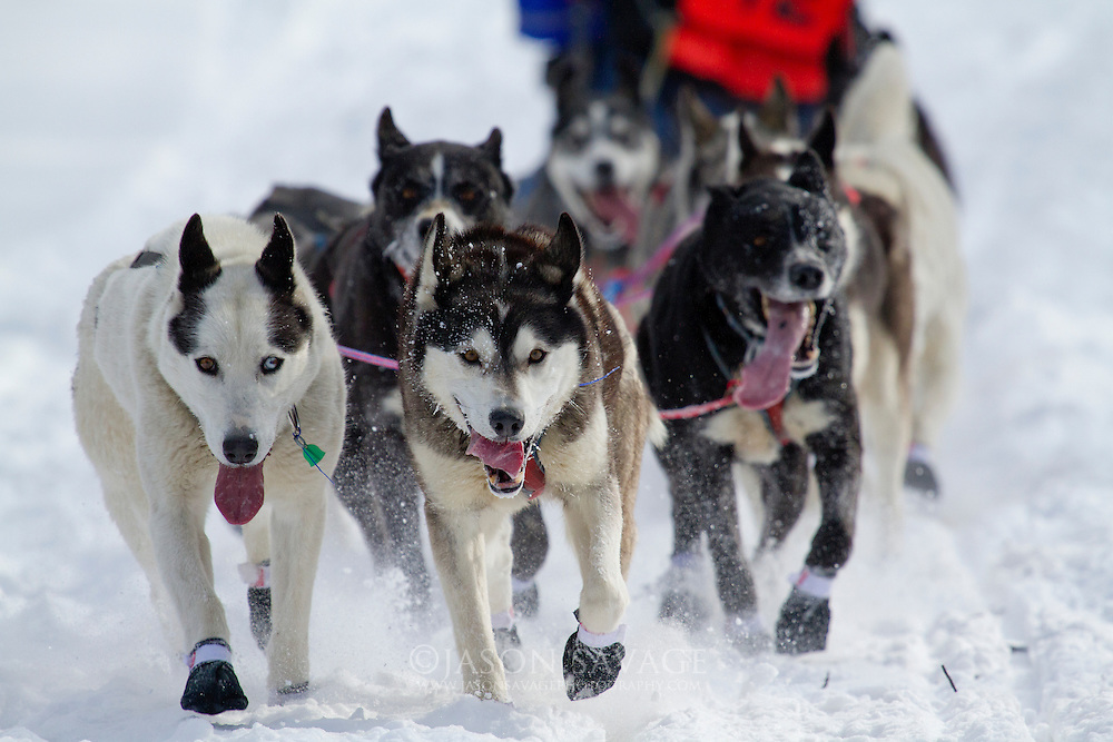 A qualifier for the Iditarod, Montana Race to tke sky begins near Remini.