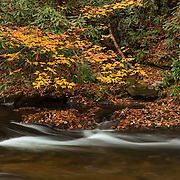 Bald River Small Cascade - Fall Color - Great Smoky Mountains TN