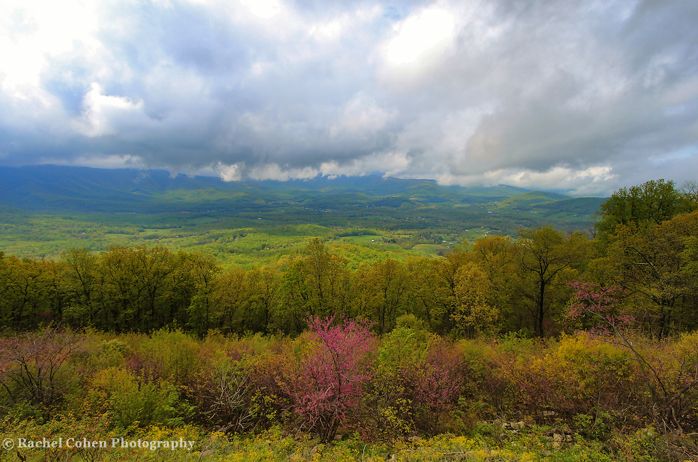 &quot;View to a Spring Storm&quot;<br />