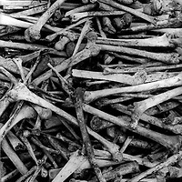 Bisesero, Rwanda , May 14th 1996. Most of the men and all the women of the village were killed, a couple hundred of the 800,000 victims of the genocide .