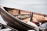 Henley on Thames, England, United Kingdom 7th July 2019, Henley Royal Regatta,  Laura II, moored in Stewards enclosure,  Sunday Finals, From Stewards Enclosure, Henley Reach, [© Peter SPURRIER/Intersport Image]<br /> <br /> 12:14:57 1919 - 2019, Royal Henley Peace Regatta Centenary,