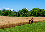 Photo of a father and son looking at a working farm in Antietam, MD.
