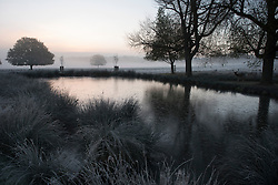 ©  London News Pictures. 08/11/2016. London, UK. A frozen pond at sunrise in Richmond Park, London on a bright autumn morning. Photo credit: Ben Cawthra/LNP