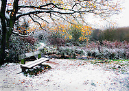 Taken on a very cold morning winter morning in 2010, while visiting one of my best freinds who i've know since playschool. It was beauttiful crisp morning. but the cloud cover meant most of the photos taken were coming up quite dull, so i needed some colour to get a good photo to contrast with. We came across this bench with a overhanging tree which immediately gave a point of interst and natural frame. I deliberatly used a a low apeture and focused on the bench so that the background didn't become to overpowering in detail. love the yellow on the leaves, which really stand out from background foliage. The snow always provides great contrast and especially so in the reeds here. I feel like the the little path behind the bench is going to lead somewhere magical....