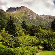 The garden at Baroniet in Rosendal, Norway.