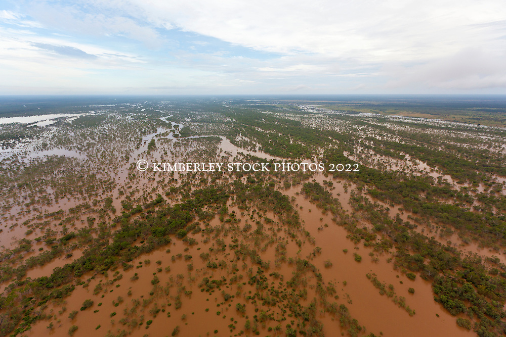 Floodwaters spread beyond the Fitzroy River near Willare.