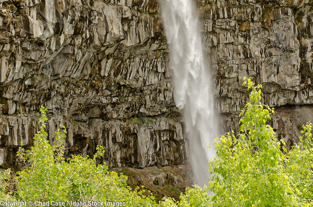 Idaho. Twin Falls. Waterfall flowing over cliff into Snake River.