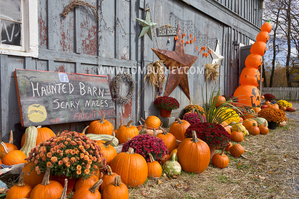 Mount Hope, New York - Pumpkins and other Halloween decoratons at Pierson's Farm on Oct. 20, 2012.