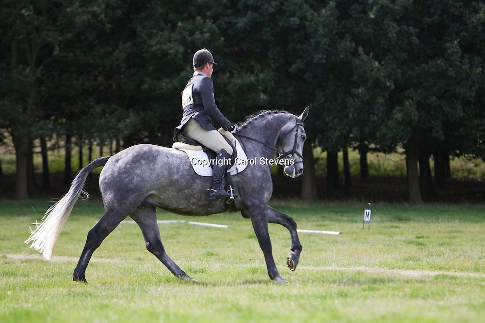 Allerton Park Horse Trials 2010  Oliver Townend Dressage x 3