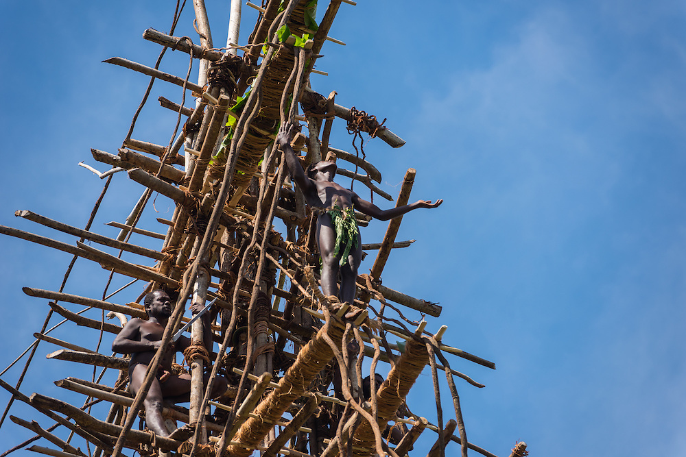 Man dives from a man made tower in a ritual called landliving, Pentecost, Vanuatu.