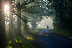 Cycling on Country Road in Morning Sunlight
