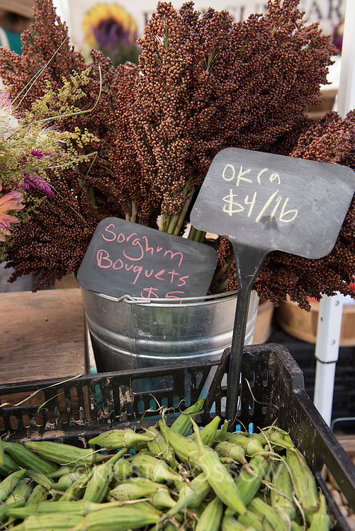 A display of sorghum bouquets and okra at Flying Cloud Farm's produce stand at the River Arts District Farmers Market. The market is held Wednesdays at 175 Clingman Avenue (next to All Souls Pizza) in the River Arts District of Asheville, North Carolina.