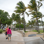 SEPTEMBER 9, 2017--MIAMI BEACH--FLORIDA<br /> Pedestrians walk in South Beach while the wind shakes palm fronds in South Beach as hurricane Irma approaches South Florida.<br /> (Photo by Angel Valentin)