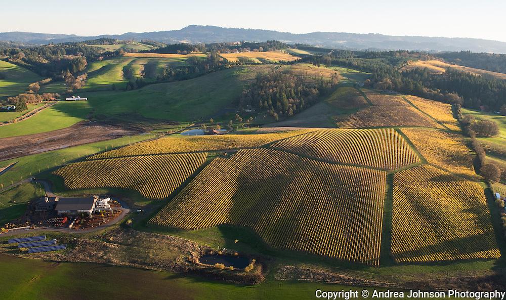 Gran Moraine, Yamhill-Carlton AVA, Willamette Valley, Oregon