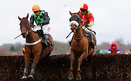 Plumpton, UK, 16th January 2017<br /> Paul Moloney and Yourholidayisover (R) clear the final fence with Paddy Brennan and Easter in Paris to win the 'My Dashboard' On The Timeform App Handicap Chase at Plumpton Racecourse.<br /> &copy; Telephoto Images / Alamy Live News