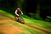 Downhill mountain bike racer at Sugar Showdown event, Sugar Mountain, North Carolina.