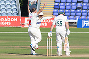 Graham Wagg appeals against Mark Cosgrove during the Specsavers County Champ Div 2 match between Glamorgan County Cricket Club and Leicestershire County Cricket Club at the SWALEC Stadium, Cardiff, United Kingdom on 19 September 2019.