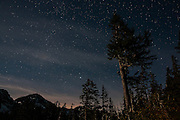 Thousands of stars shine over a forested area of the North Cascades in Washington state.
