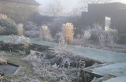 Hoar frost in the barn garden at Great Dixter in winter