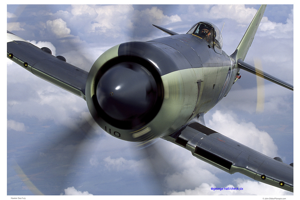 Hawker Sea Fury, aerial close up