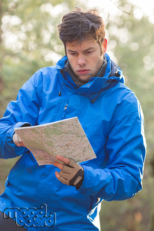 Young male hiker reading map in forest