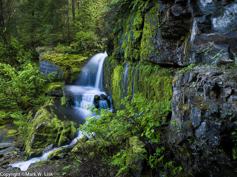 Spring run off creates lush moss and waterfalls along the North Fork of the St Joe River.