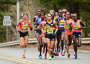The women's elite group passes by during the 119th running of the Boston Marathon along Central Street in Wellesley, April 20, 2015.   (Wicked Local Photo/James Jesson).