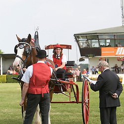 Fiona McMillan driving her Clydesdale, Mill Bob