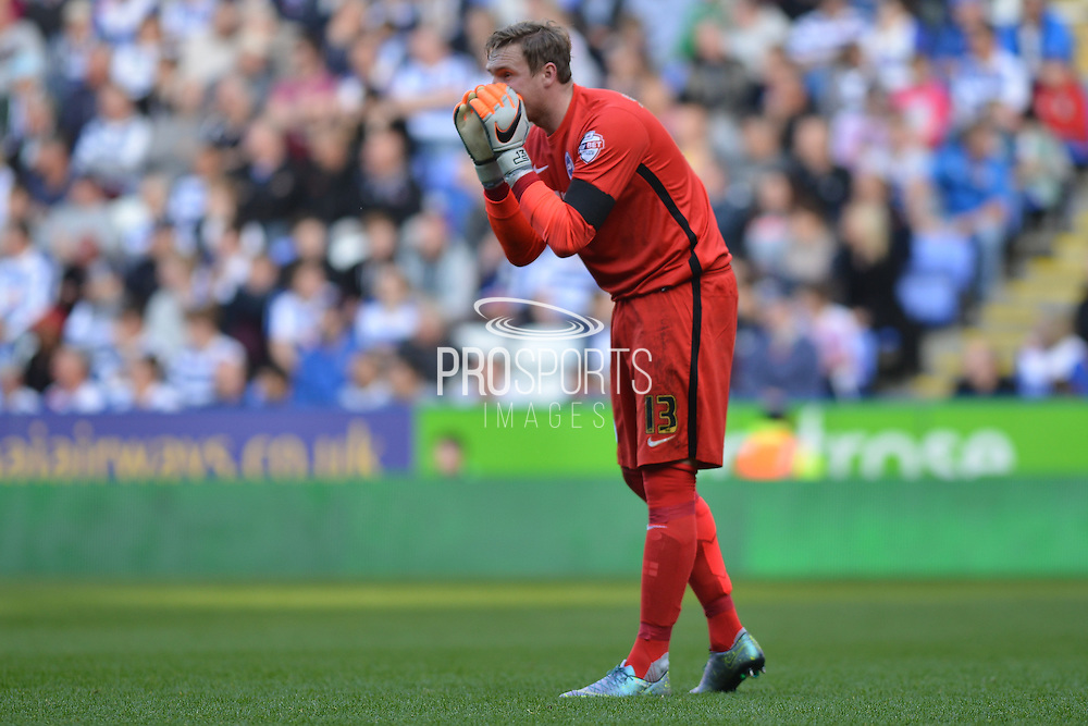 Brighton and Hove Albion goalkeeper David Stockdale shouts out instructions during the Sky Bet Championship match between Reading and Brighton and Hove Albion at the Madejski Stadium, Reading, England on 31 October 2015. Photo by Mark Davies.