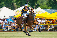 5. Luisenluster Polo Cup (2014)