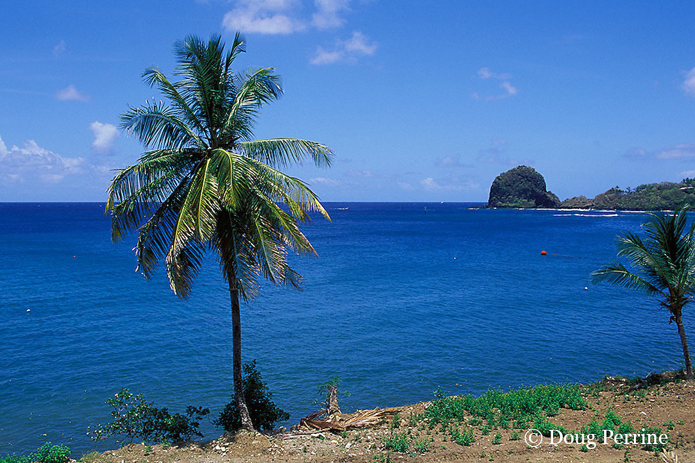 view towards Young Island from Saint Vincent,  St. Vincent & the Grenadines, West Indies ( Eastern Caribbean Sea )