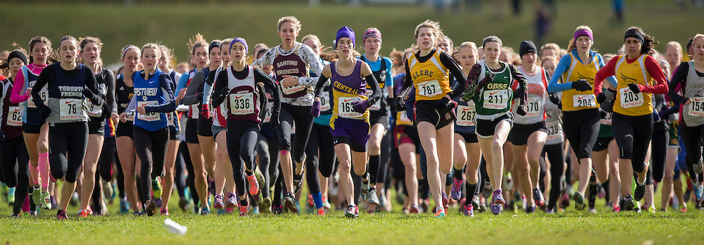 Claire Smith of Glebe CI competes at the OFSAA Cross Country Championships in Waterloo Ontario, Saturday, November 1, 2014.<br /> Mundo Sport Images/ Geoff Robins